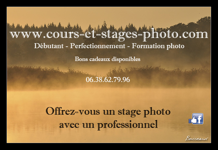 cours-photographie-orleans-45